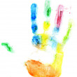 Close up of colored hand print on white — Stock Photo #38703469