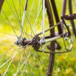 Stylish bicycle on grass — Stock Photo #51054601