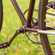 Stylish bicycle on grass — Stock Photo #51054645