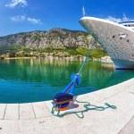Cruise ship in the por — Stock Photo #13772892