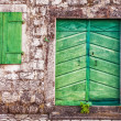 Old wall with door and windows — Stockfoto