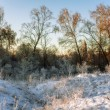Sunset light in winter field  — Stock Photo