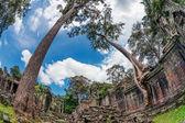 древний буддийский кхмерский храм в комплекса ангкор-ват — Стоковое фото