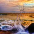 Tropical colorful sunset. — Stock Photo