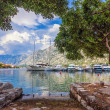 A small bay with boats — Foto Stock