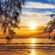 Stock Photo: Tropical beach at sunset.