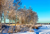 Winter-feld unter — Stockfoto