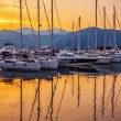 Sailing boats in marina at sunset. — Stock Photo