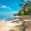 Foto de Stock  : Exotic tropical beach.