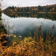 Autumnal lake near the forest — Stock Photo #31061441