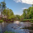 Summer river — Stock Photo
