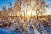 Zachód słońca w zimie pole — Zdjęcie stockowe