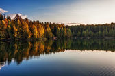 Autumnal lake near the forest — Стоковое фото