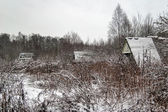 Winter field near the forest — Stock Photo