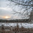 Sunset in winter field — Stock Photo #34909931