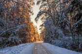 美しい冬の日没 — ストック写真