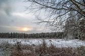Sunset in winter field — Stock Photo