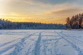Tramonto in campo invernale — Foto Stock