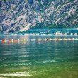 Row of kayaks in the sea  — Stock Photo