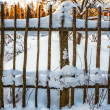 The old fence — Stock Photo