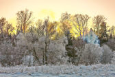 Sunset in winter field — Stockfoto