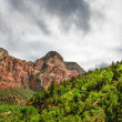 Stock Photo: Slopes of Zion canyon