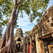 Ancient buddhist khmer temple in Angkor Wat complex — Stock Photo #41664439