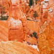 View from insise of Bryce Canyon. — Stock Photo