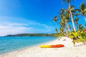 kayak at the tropical beach — Stock Photo