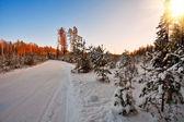 Beautiful winter sunset — Stock Photo