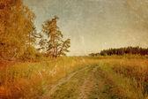 Sommer-feld unter himmel im grunge-stil — Stockfoto