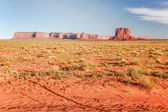 Landscape of desert in Arizona state — Stock Photo