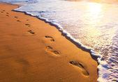 Playa, onda y pasos al atardecer — Foto de Stock