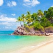 Tropical island with beach and trees — Stock Photo