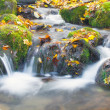 Beautiful cascade waterfall in autumn forest — Stockfoto