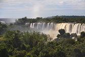 Wodospady iguazu — Zdjęcie stockowe