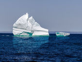 Iceberg in sea — Stock Photo