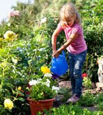 Girl watering flowers are watered from — Stock Photo