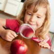 Child are considering magnifying glass apple — Zdjęcie stockowe #12359527