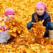 Children at autumn park — Stock Photo
