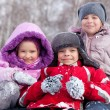 Royalty-Free Stock Photo: Happy children in winter park