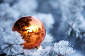 Christmas background. Christmas ball on tree — Stock Photo