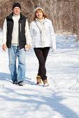 Coppia di anziani felice a winter park — Foto Stock