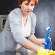 Woman cleaning kitchen - Stock Photo