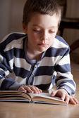 çocuk reeding kitap — Stok fotoğraf