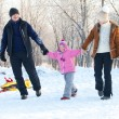 Family walking in a winter park — Stock Photo #29993319