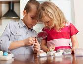 Barn funderar en förstoringsglas samling stenar — Stockfoto