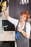 Woman cleaning kitchen — Stock fotografie