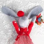 Chrictmas hare — Stock Photo