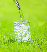 Glass of water — Stock Photo